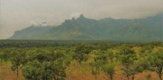 Riftdalen i Aust-Afrika. Foto: Eright